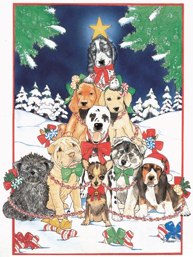 Pipsqueak Productions C442 Mix Dog  Holiday Boxed Cards