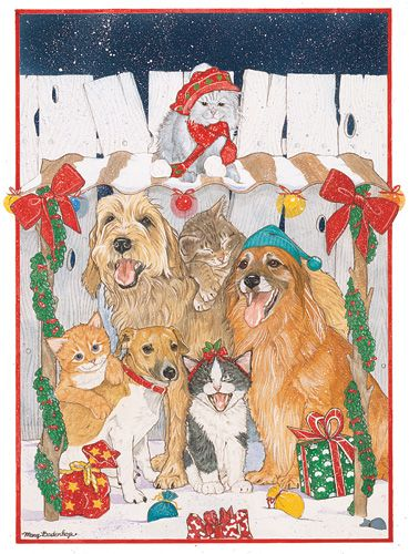 Pipsqueak Productions C471 Mix Dog With Cat Holiday Boxed Cards