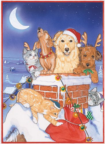 Pipsqueak Productions C492 Mix Dog With Cat Holiday Boxed Cards
