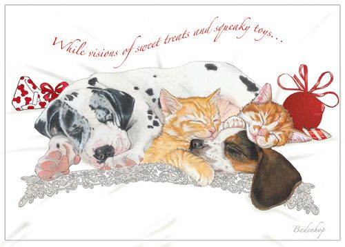 Pipsqueak Productions C534 Mix Dog With Cat Holiday Boxed Cards