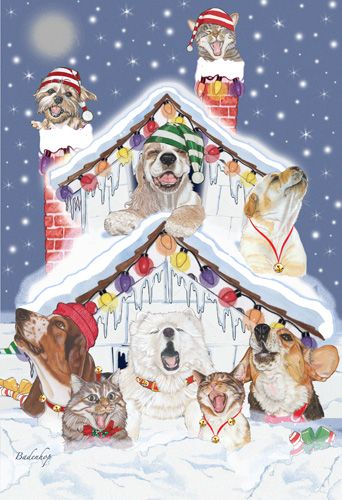 Pipsqueak Productions C540 Mix Dog With Cat Holiday Boxed Cards