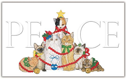 Pipsqueak Productions C570 Cat Holiday Boxed Cards