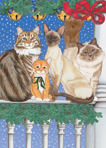 Pipsqueak Productions C876 Cat Holiday Boxed Cards