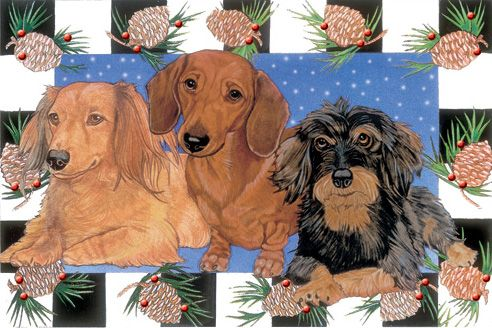 Pipsqueak Productions C928 Dachshund Holiday Boxed Cards