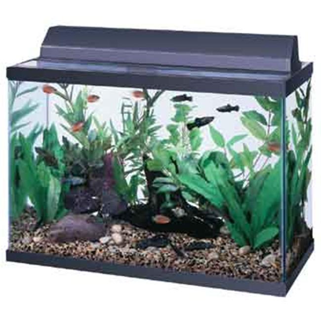 All Glass Aquarium AAG21224 All Glass Aquarium AAG21224 24 in ...