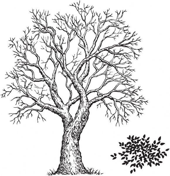 Alvin SSL-3160 Tree & Foliage Stamp Set (2)