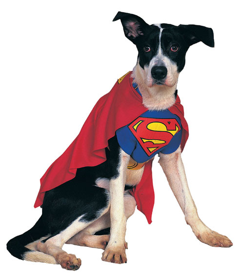 Rubies Costume Co 6133 Superman Pet Costume Size Medium BUYS10391