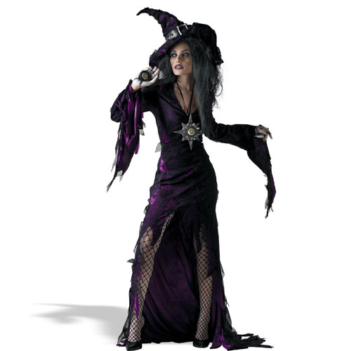 Disguise Inc 18670 Sorceress Adult Costume Size Standard One-Size