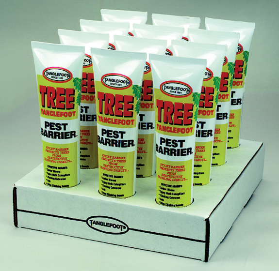 Tree Tanglefoot 6 Oz. Model 9906 Pack of 12