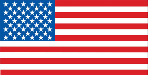 Creative Expressions 24194 10 American Flag Banner