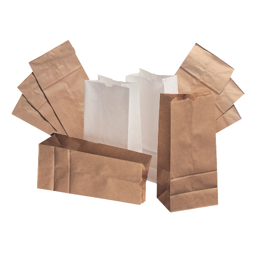 Paper Bags Sacks BAG GK20500 20 Natural Tall Paper Bag 500Bundle