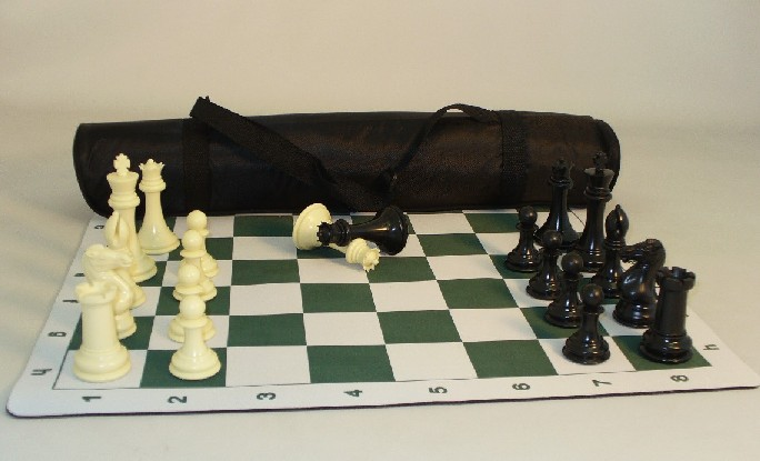 WW Chess 95201 Pro Chess 4 in. Plastic Set