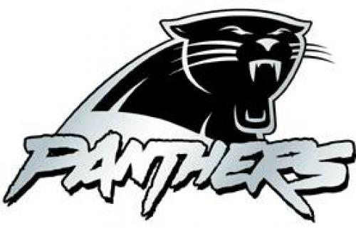 Carolina Panthers Auto Emblem - Silver