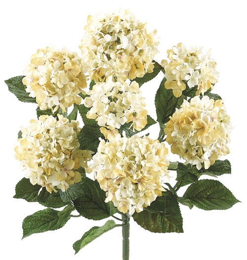 20 Inch Hydrangea Bush  with Flocked Leaves in Cream Beige - Qty of 6