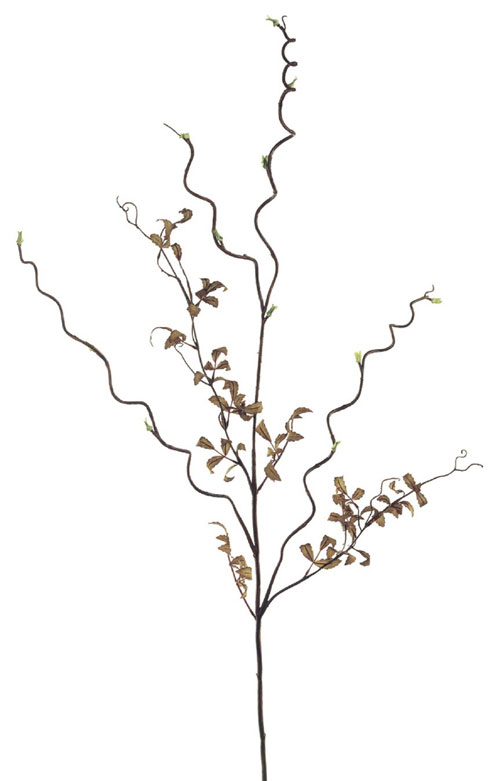 50 Inch Curly Willow Branch - Olive Green - Qty of 12