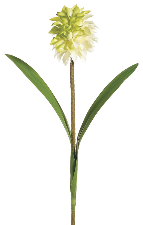 32 Inch Pineapple Flower Spray Green Cream - Qty of 12