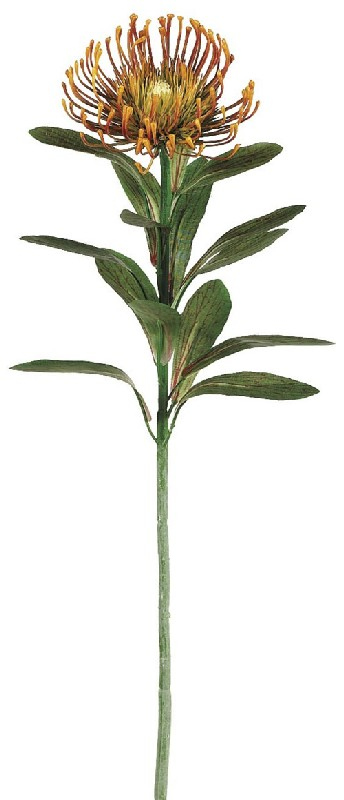 28 Inch Plastic Protea Spray x1 - Rust - Qty of 12