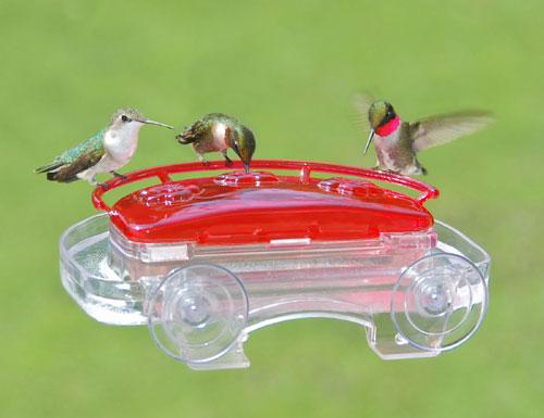Aspects ASPECTS407 Jewel Box Window Hummingbird Feeder