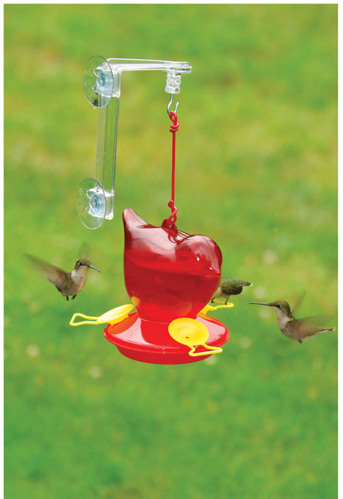 Songbird Essentials SEBCO312W Window Bird Hummingbird Feeder - Red