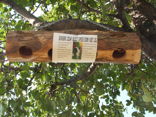 Songbird Essentials SESCS407 Suet Log - Upside Down