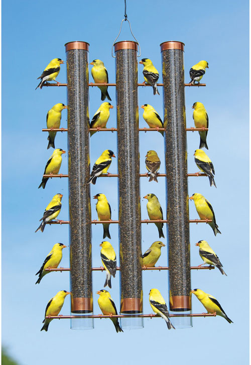 Copper Finches Favorite 3-Tube Feeder