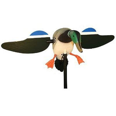Mojo Decoys HW2109 MOJO Mallard Drake with remote