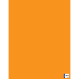 Royal Consumer Product 24303 Royal Consumer Product 24303 22 in. X 28 in. Orange Poster Board 25 Count