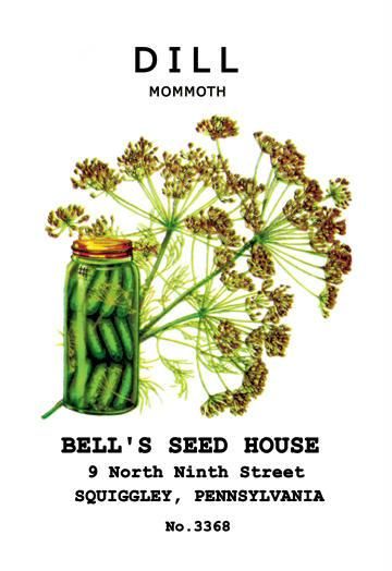 Dill: Mammoth 12x18 Giclee On Canvas Dill, Dill Seed, Dill Seeds, Herbs, Herb Seeds, Garden Seeds, Vegetable Seeds, Seeds
