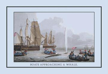 A Boat Approaching a Whale 12x18 Giclee On Canvas