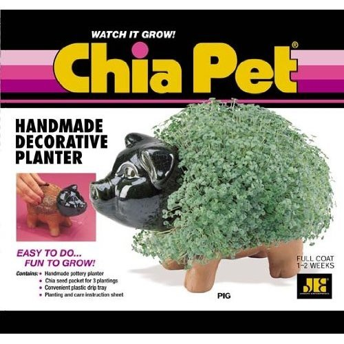 Joseph Enterprises CP040-16 Pig Chia Pet- Case of 16