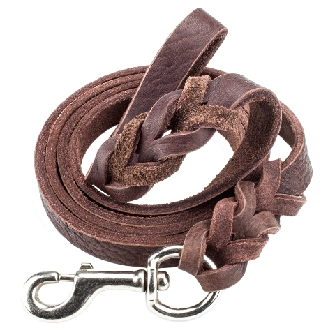 BrybellyHoldings ALSH-101 6-foot Braided Leather Dog Leash