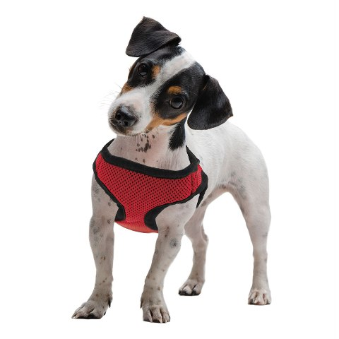 BrybellyHoldings AHRN-003 Medium Red Soft & Safe Dog Harness