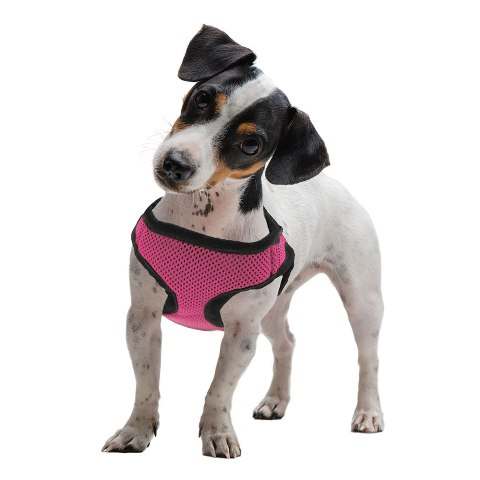BrybellyHoldings AHRN-203 Medium Pink Soft & Safe Dog Harness