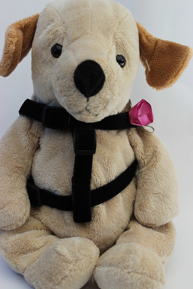 Diva Dog 513 Carnation Step-In Harness