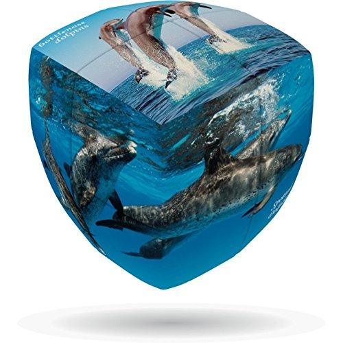 Dolphins V-Cube 2b