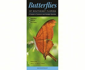Quick Reference Publishing QRP114 Butterflies of the Southeast Florida