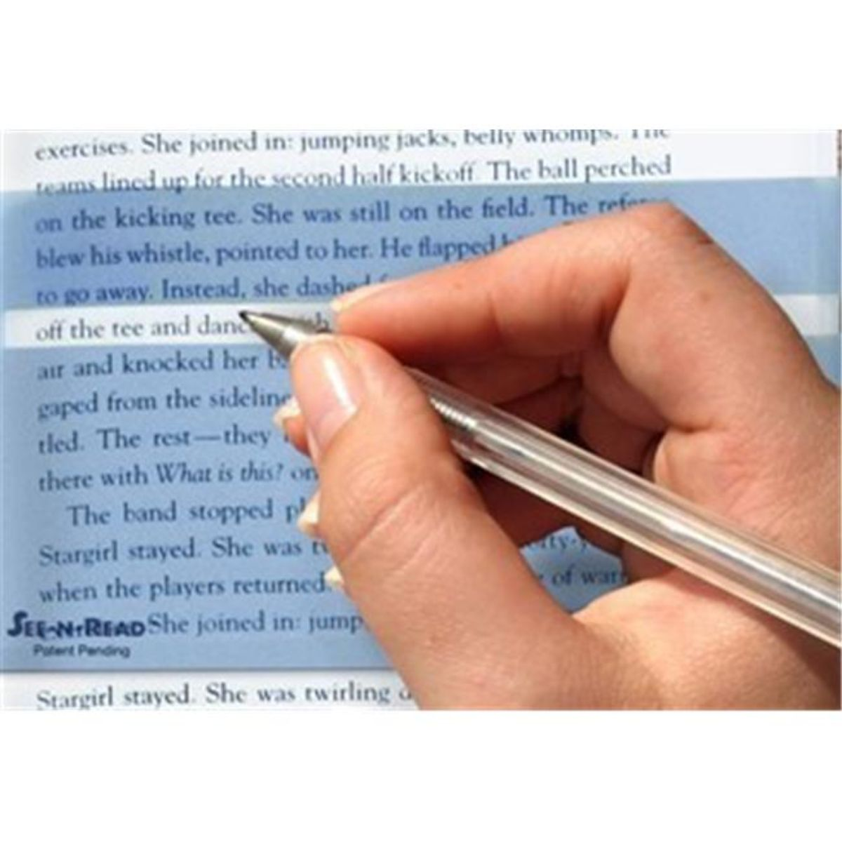 Cadena Smith Enterprises CE12551 See-N-Read Reading Tools-Book Size- Memory Mark Pack of 25