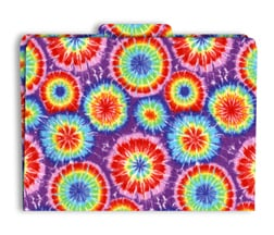 Barker Creek & Lasting Lessons Las1310F Functional File Folders Tie-Dye