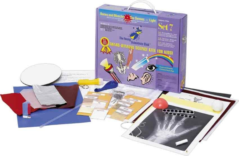 The Young Scientists Club WH-925-1107 Young Scientist Series- Set 7: Bones and Muscles - The Senses - Light