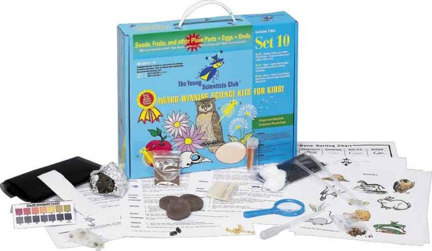 The Young Scientists Club WH-925-1110 Young Scientist Series- Set 10: Seeds  Fruits  and other Plant Parts - Eggs - Owls