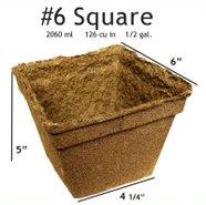 CowPots #6 Square Pot - 20 pots