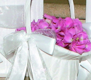 Ivy Lane Design 4UT Grace Flower Girl Basket - White