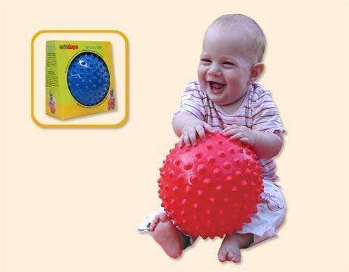 EduShape 705176 SENSORY BALL 6.5