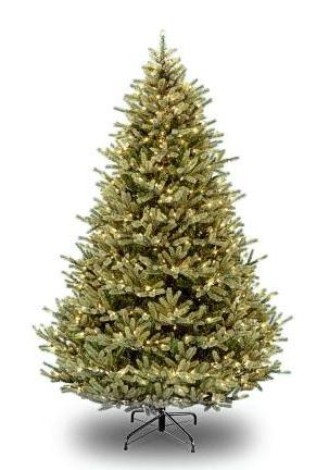 National Tree Company PENF1-300-75 7.5 Foot Poly Norway Hinged Tree with 850 Clear Lights