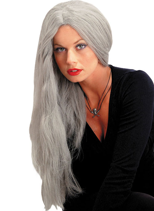 Costumes For All Occasions MR176001 Wig 24 Inch Straight Grey