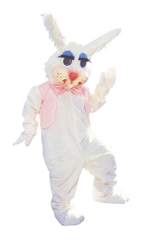 Costumes For All Occasions AL100AP Peter Rabbit