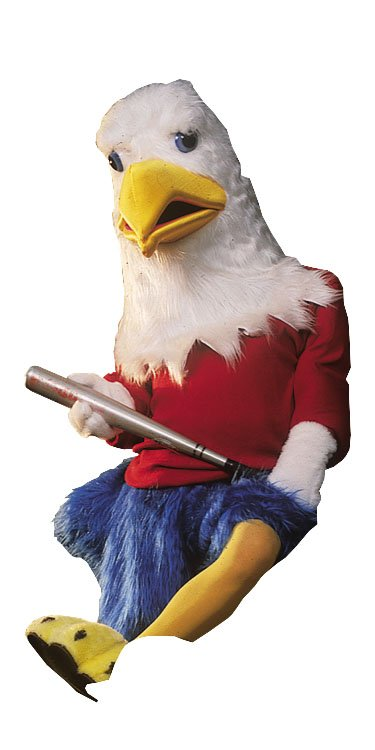 Costumes For All Occasions AL131AP Eagle
