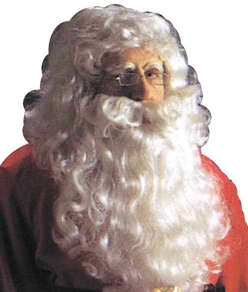 Costumes For All Occasions CA25 Santa Wig and Beard Reg