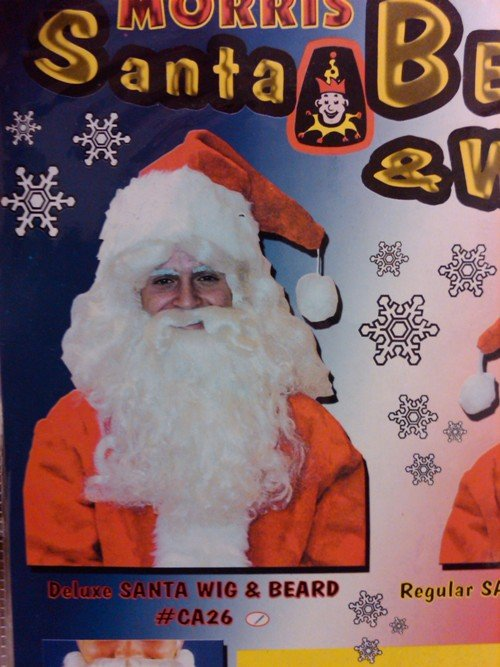 Costumes For All Occasions CA26 Santa Wig and Beard Deluxe
