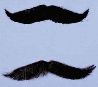 Costumes For All Occasions CB35BK Mustache English Style Blk